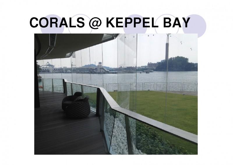 CoralsKeppel2-800x566.jpg