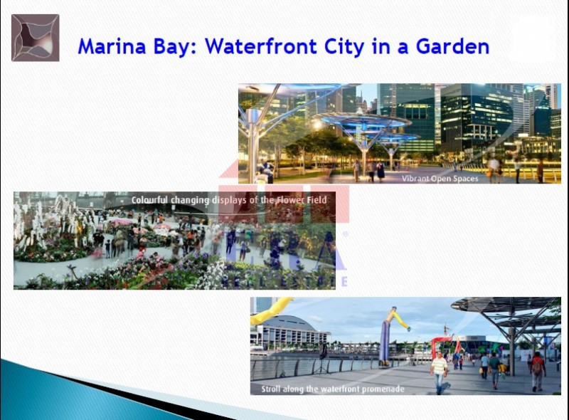Marina-Bay2-800x590.jpg